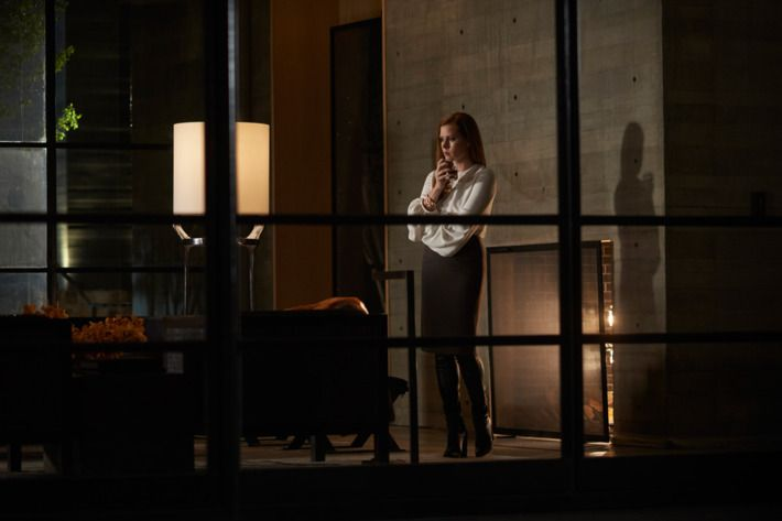 03-nocturnal-animals-2.w710.h473