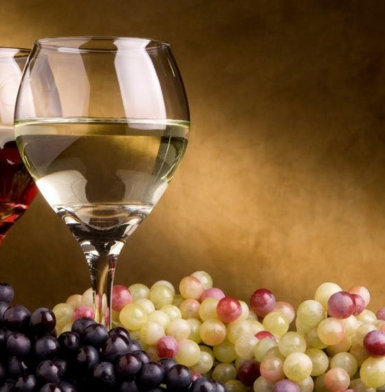 Guidelines for choosing the best wine