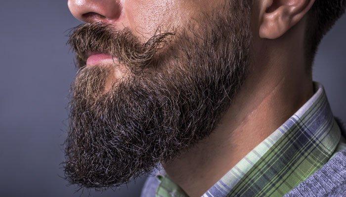 Best-Beard-Kits
